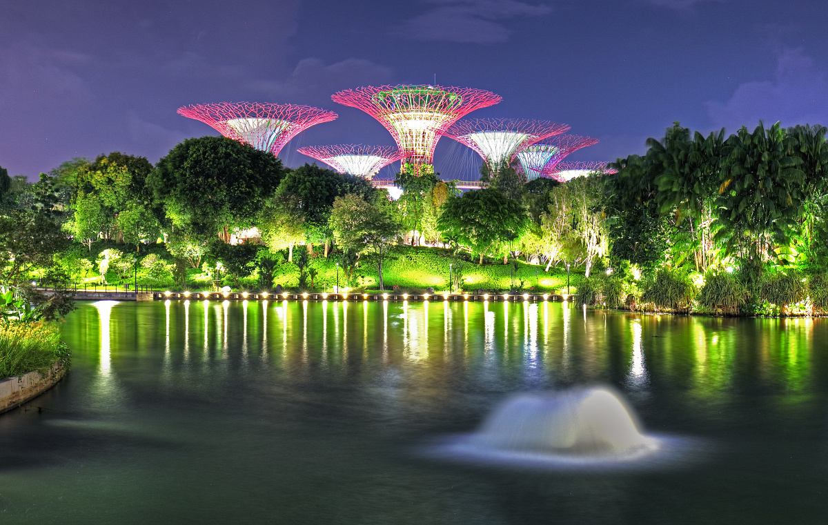 Singapore Garden with super tree