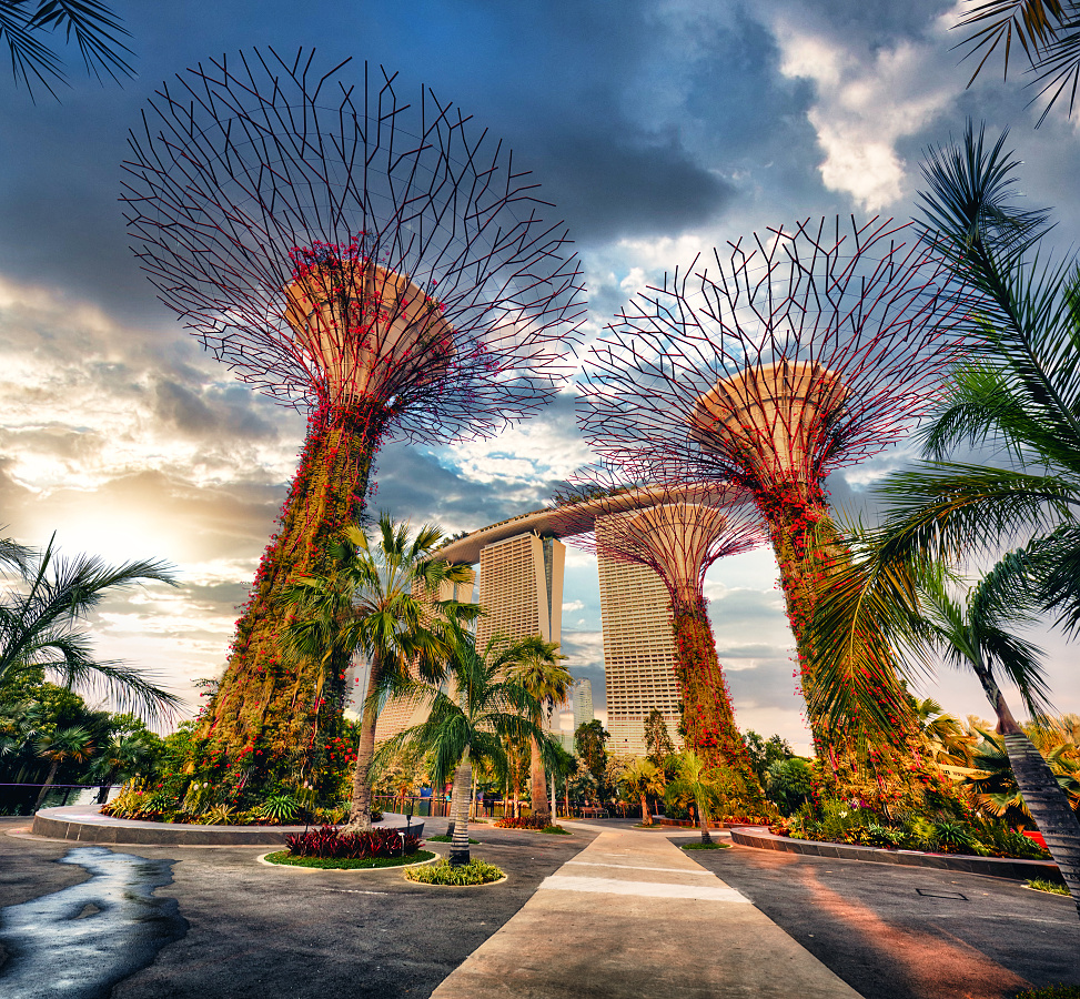 Singapore Supertrees in garden